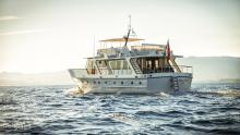 Stalca Sold, Stalca for charter